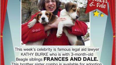 Attorney Kathryn Burke - Celebrity of the Week